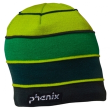 피닉스 스키비니 15/16 PHENIX Demo Watch Cap DG